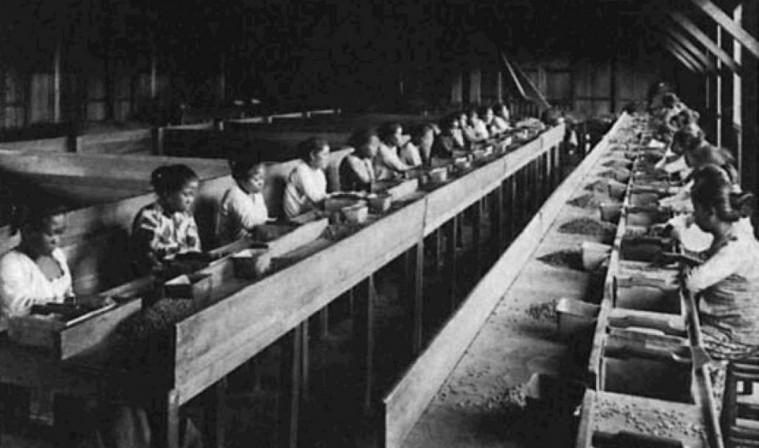 Napak Tilas Kebangkitan Buruh Di Indonesia